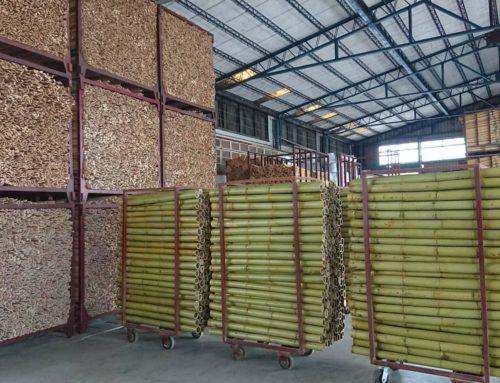 竹材資源零廢棄 化身生質燃料愛地球