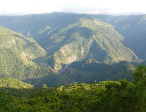 林務局屏東林管處與永在林業合作社通過森林永續經營管理團體驗證